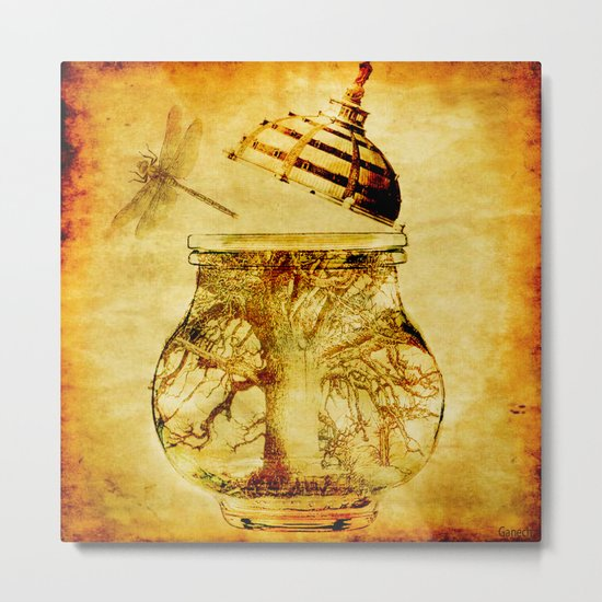The liberation of the dragonfly Metal Print