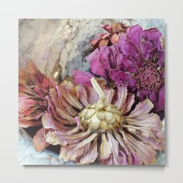 Dried Zinnias Metal Print