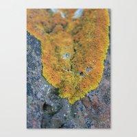 blanket Canvas Prints featuring Blanket by GingerLeaf