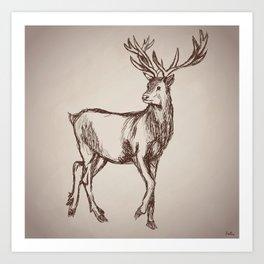 Deer Drawing Art Print