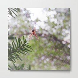 orb weaver spider and bokeh Metal Print