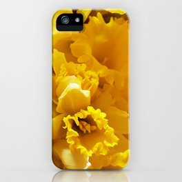 Daffs iPhone Case