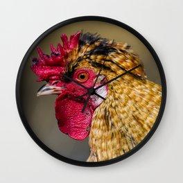 Proud cockerel Wall Clock