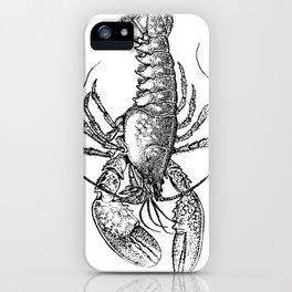 Vintage Lobster illustration iPhone Case