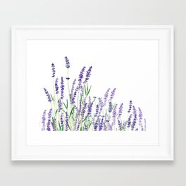 lavender watercolor horizontal Framed Art Print