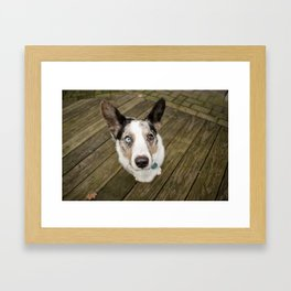 I Corgi You Framed Art Print