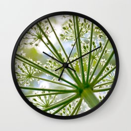 Delicate cow parsley Wall Clock