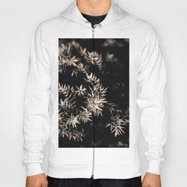 ENCHANTED SEPIA BLACK #1 #art #society6 Hoody