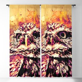 owl portrait 5 wslsh Blackout Curtain