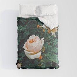 Dark Garden Comforters