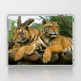 hai der tiger Laptop & iPad Skin
