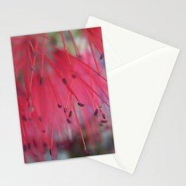 bottlebrush Stationery Cards