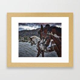 Horses, Anza Borrego, California Framed Art Print