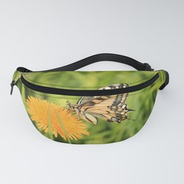 The Old World swallowtail (Papilio machaon) Fanny Pack