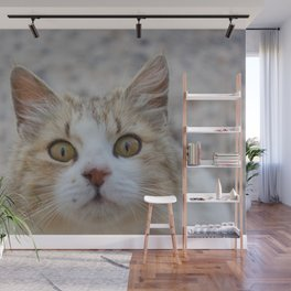 Cat by Abeer Shaheen Wall Mural
