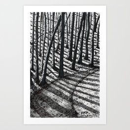 'Trees and Shadows' Art Print
