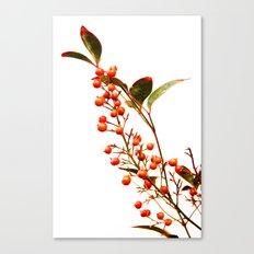 A Fruitful Life Canvas Print