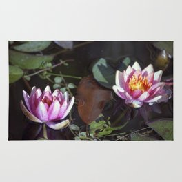 Longwood Gardens - Spring Series 26 Rug