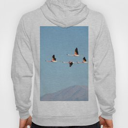 PINK FLAMINGO FLOCK IN THE DESERT Hoody