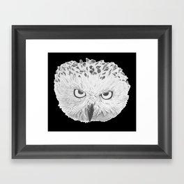 Snowy Owl Black Framed Art Print