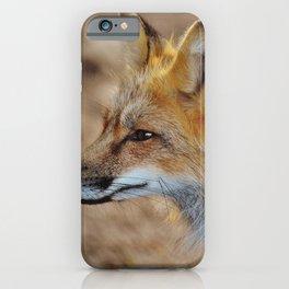 Inquisitive Mr. Fox iPhone Case