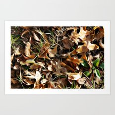 Forest Floor Art Print