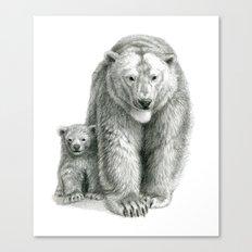 Polar bear and cub SK041 Canvas Print