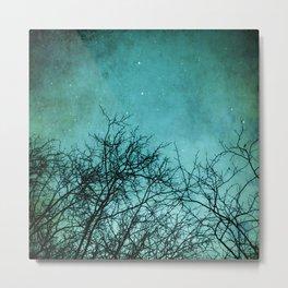 By Starlight Metal Print