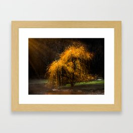 Dancing Sprites Framed Art Print