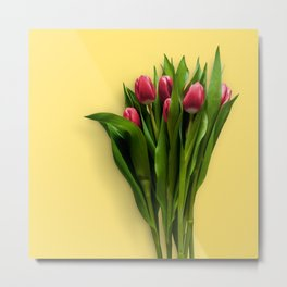 Yellow Bright Light Amber Pink Tulip Blossoms Flatlay Metal Print