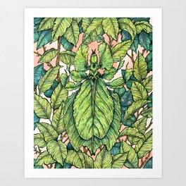 Leaf Mimic Art Print