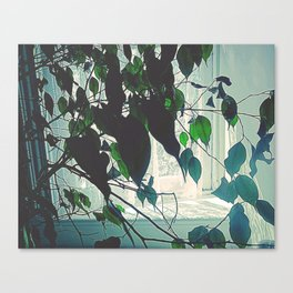 Window Sill Backlight Canvas Print