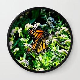 Monarch on Fiddlehead Blossoms Wall Clock