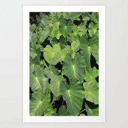 An ocean of leaves  Art Print