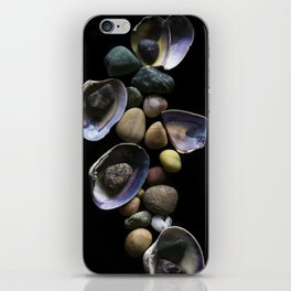 Shells and Stones May... iPhone Skin