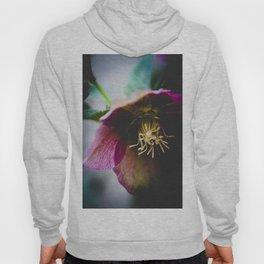 A winter flower Hoody