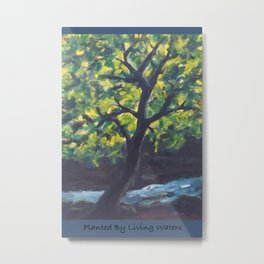 Planted by Living Waters AC181121a Metal Print