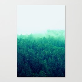 Green Fog Canvas Print