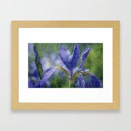 Flowers view Framed Art Print