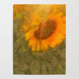dreamy summer Poster