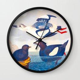Black Guillemot Duck Wall Clock
