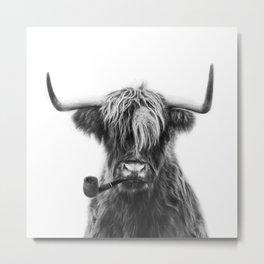 Mr Highland cattle Metal Print