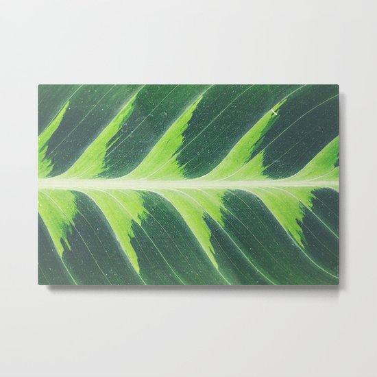 Leaf green Metal Print
