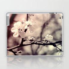 Tree Blossom Laptop & iPad Skin