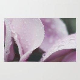 Pink Daisy still Life, flower fine art print, interior design, home decoration, bedroom Rug