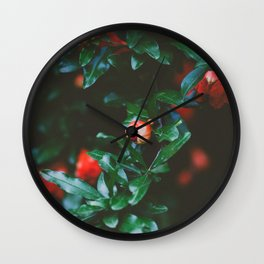 Pomegranate Study, No. 1 Wall Clock