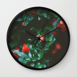 Pomegranate Study, No. 1 Wall Clock