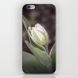 Young Tulip iPhone Skin