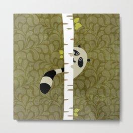A shy raccoon Metal Print