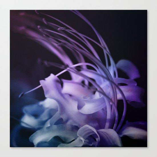 Dream Flower 9 Canvas Print